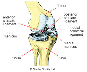 Knee Meniscus Injuries Treatment